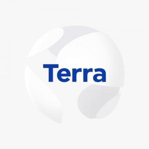 TerraUSD verwachting