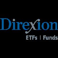 Direxion Daily aandeel